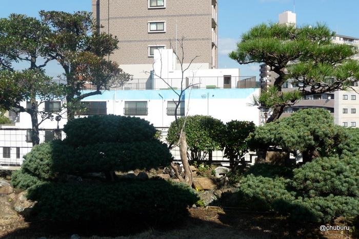 旧秋田商会ビルの屋上庭園一般公開に行ってきました。 その3屋上庭園