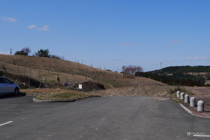 福岡県の梅の名所を見てきました。その1まだこれからだった八木山高原花木園